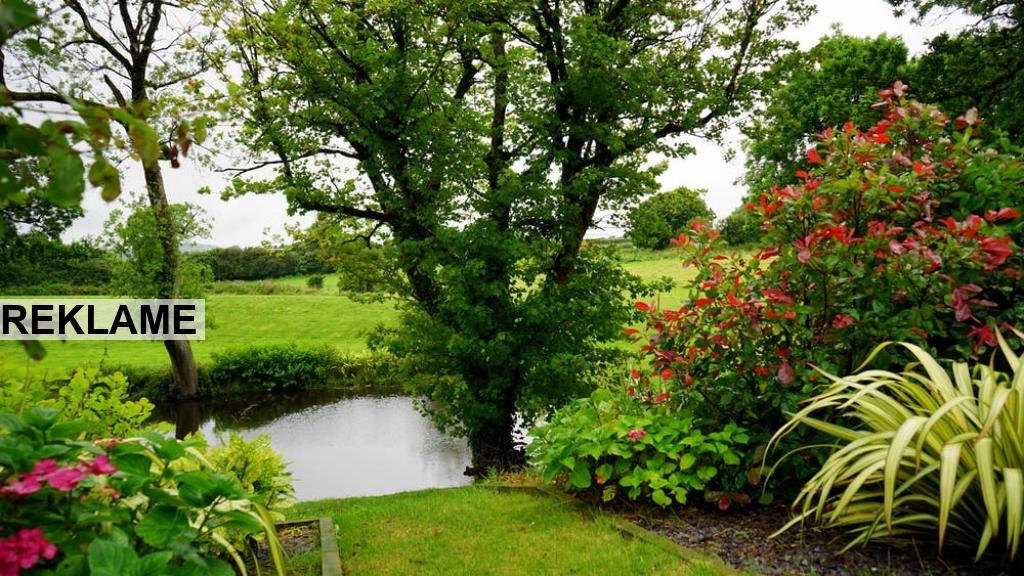 Byg dit eget haveskur i haven