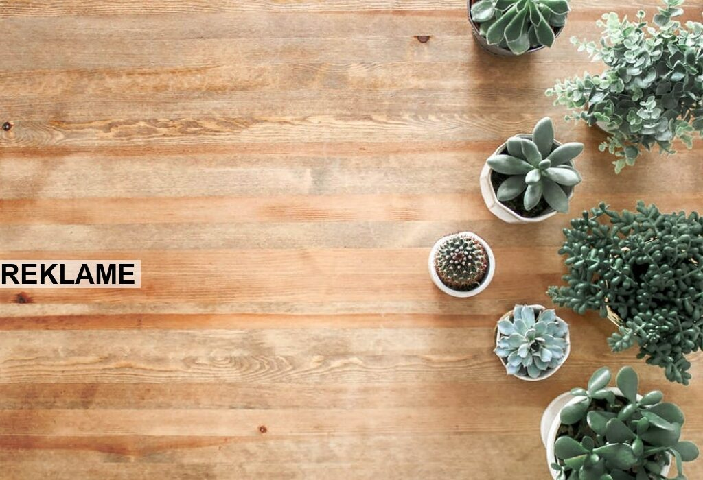 Opgrader dit hjem med en gulvafslibning