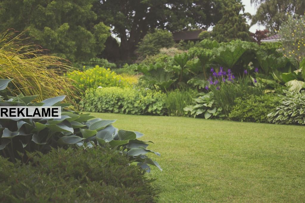 Sådan arbejder du hensigtsmæssigt i haven